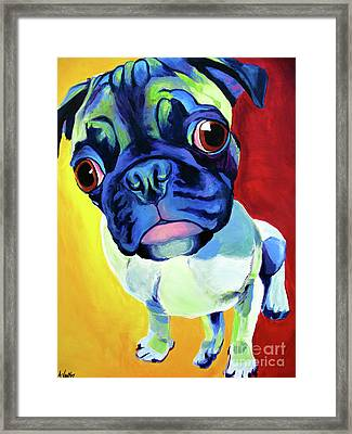 Pug - Lola Framed Print by Alicia VanNoy Call