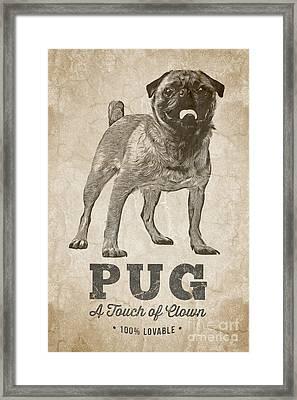 Pug A Touch Of Clown Framed Print by Edward Fielding