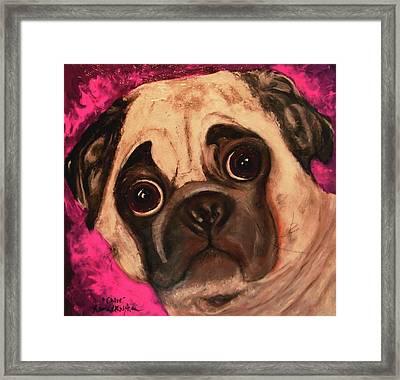 Pug - Chloe Framed Print