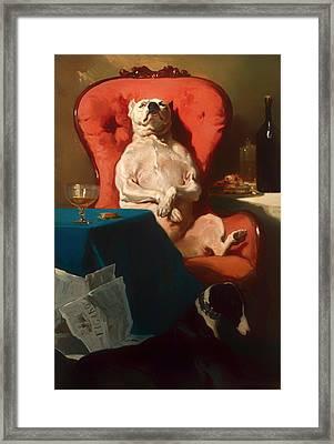 Pug Dog In An Armchair  Framed Print by Mountain Dreams