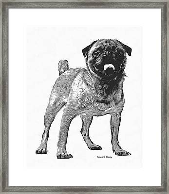 Pug Dog Standing Graphic Framed Print