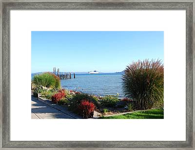 Puget Sound Framed Print by Sergey and Svetlana Nassyrov