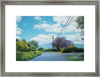 Pulehuiki Road Upcountry Kula Maui Hawaii Framed Print by Sharon Mau
