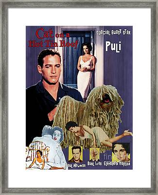 Puli Art Canvas Print - Cat On A Hot Tin Roof Movie Poster Framed Print