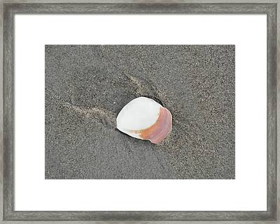 Pulling Mussels Framed Print by JAMART Photography