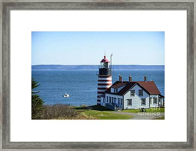 Pulling Traps At Quoddy Head Framed Print by Alana Ranney