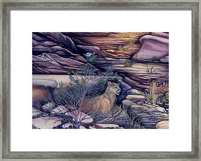 Puma In The Desert Framed Print by Sevan Thometz