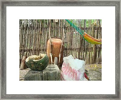 Pumkin 1 Framed Print