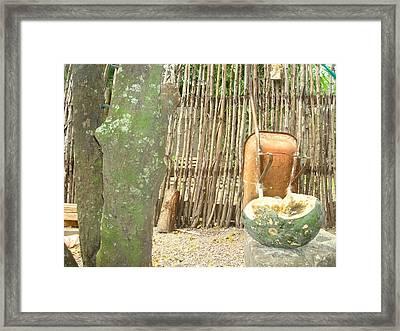 Pumkin 2 Framed Print