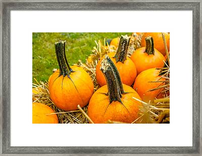 Pumpkin And Harvest Decorations For The Holidays Framed Print