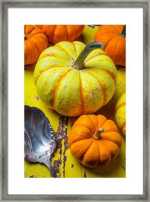 Pumpkin And Old Spoon Framed Print