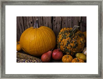 Pumpkin Autumn Still Life Framed Print by Garry Gay