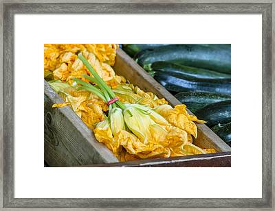 Pumpkin Blossoms Framed Print by Teri Virbickis