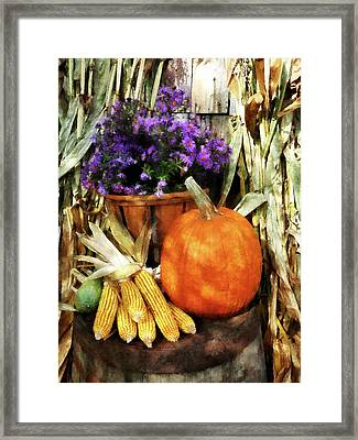 Pumpkin Corn And Asters Framed Print by Susan Savad