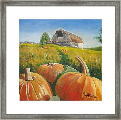 Pumpkin Harvest  Framed Print