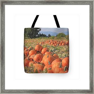 Pumpkin Harvest - Tote Framed Print by Donna Kennedy