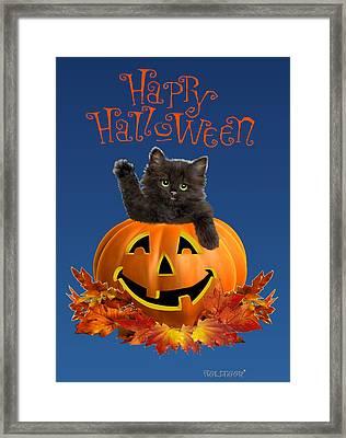 Pumpkin Kitty Framed Print