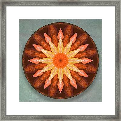 Pumpkin Mandala -  Framed Print