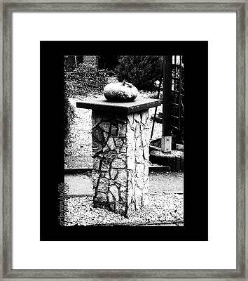 Framed Print featuring the photograph Pumpkin On A Pedestal by Mimulux patricia no No