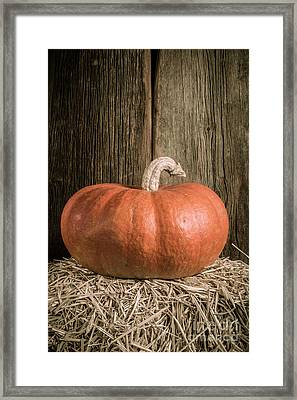 Pumpkin On Straw Bale Framed Print by Edward Fielding