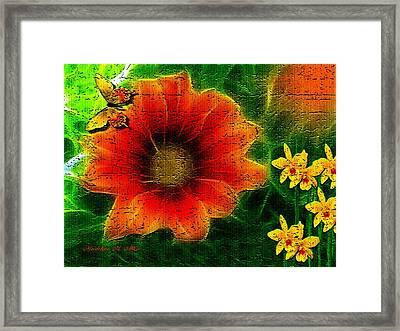 Pumpkin Orange Framed Print