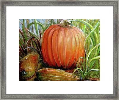 Pumpkin Patch  Framed Print by Bernadette Krupa