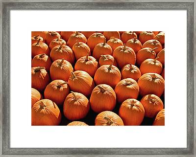 Pumpkin Pile Framed Print by Todd Klassy