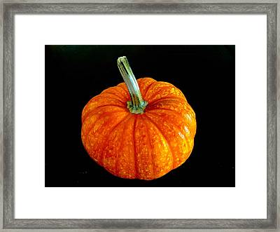 Pumpkin Framed Print by Russell Keating