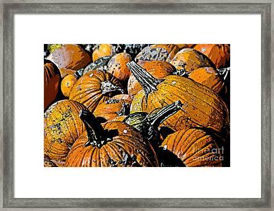 Pumpkin Sale  Framed Print by Juls Adams