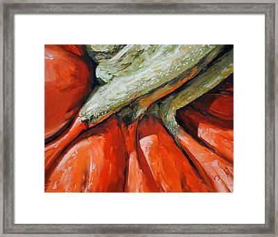 Pumpkin2 Framed Print