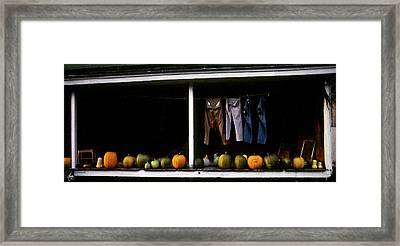 Pumpkins And A Washline Framed Print