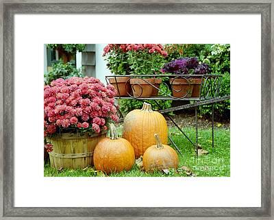Pumpkins And Flowers Framed Print by Linda Drown