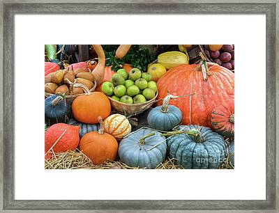 Pumpkins And Fruit Framed Print by Tim Gainey