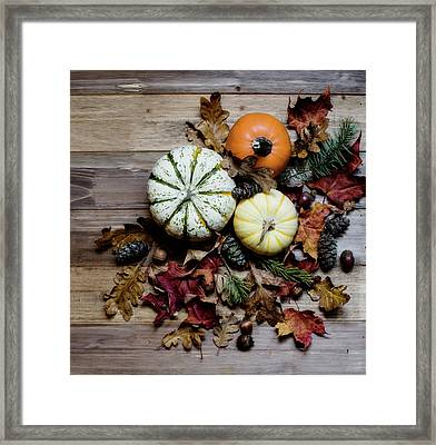 Pumpkins And Leaves Framed Print
