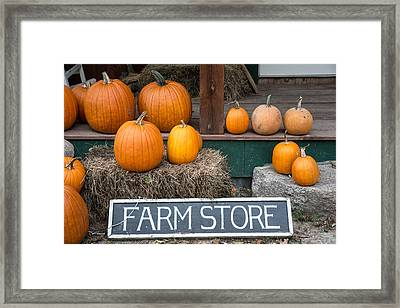Pumpkins At Farm Store Framed Print by Nicole Freedman