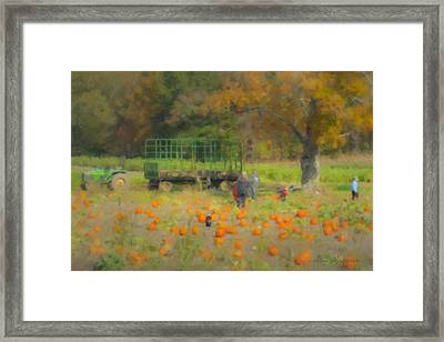Pumpkins At Langwater Farm Framed Print