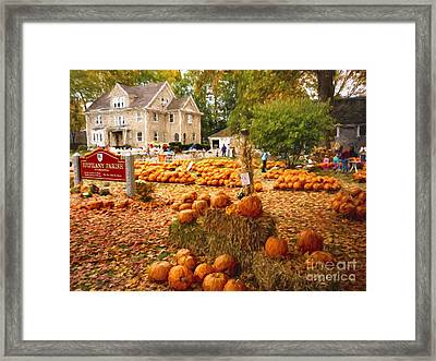 Pumpkins For Sale Framed Print by Garland Johnson