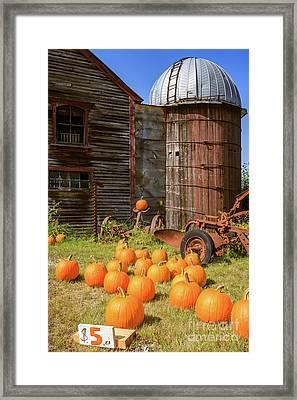 Pumpkins For Sale Old New England Farm Framed Print