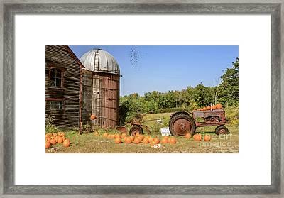 Pumpkins For Sale Thanks For Your Honesty Framed Print