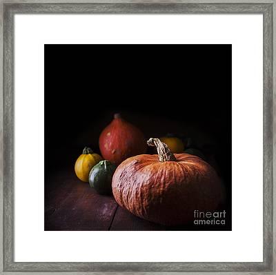Pumpkins Framed Print by Jelena Jovanovic