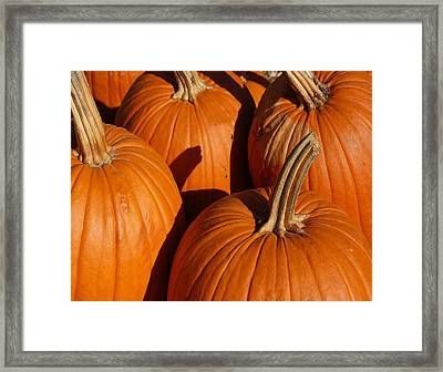 Pumpkins Framed Print by Michael Thomas