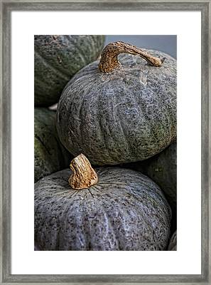 Pumpkins Of Another Color Framed Print