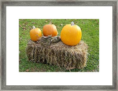 Framed Print featuring the photograph Pumpkins On A Haystack by Skyler Tipton