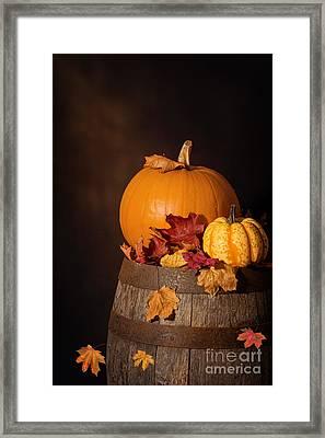 Pumpkins On Barrel Framed Print by Amanda Elwell