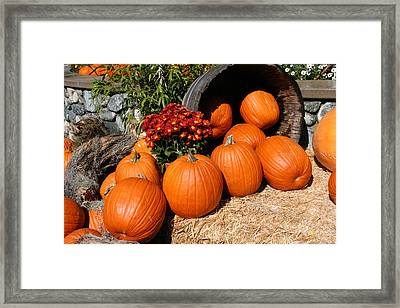 Framed Print featuring the mixed media Pumpkins- Photograph By Linda Woods by Linda Woods