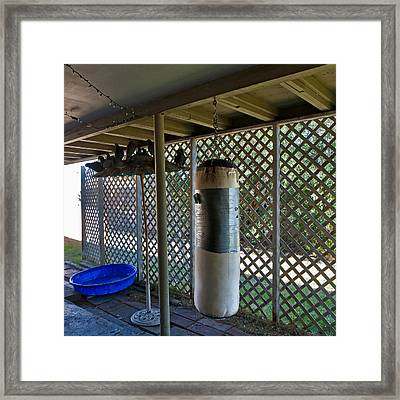 Pigeons And A Punching Bag Framed Print by Daniel Furon