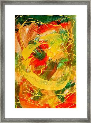 Punkin Patch Framed Print by Mordecai Colodner