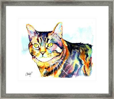 Punky Kitty  Framed Print by Christy  Freeman