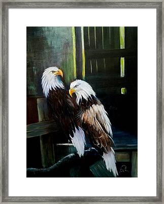 Punta Gorda Florida Rescue Framed Print by Larry Palmer