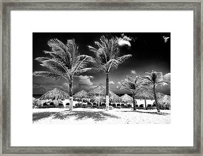 Punta Palms Framed Print by John Rizzuto